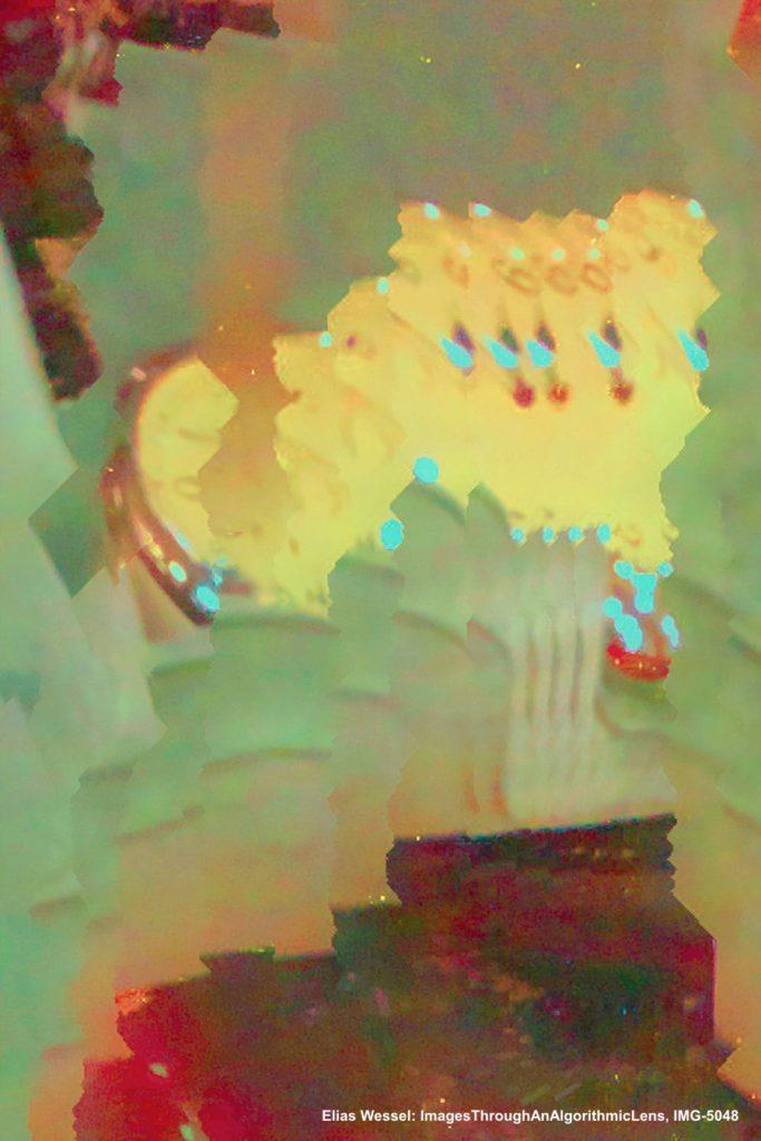 Wessel, Elias, 4_ImagesThroughAnAlgorithmicLens,IMG-5048_Pressebild